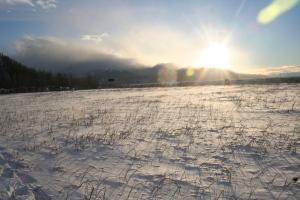 12-27-2012 snowshoes_0004