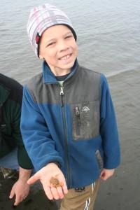 bishop's beach homer alaska clam