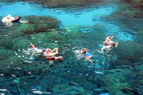 snorkel (11)