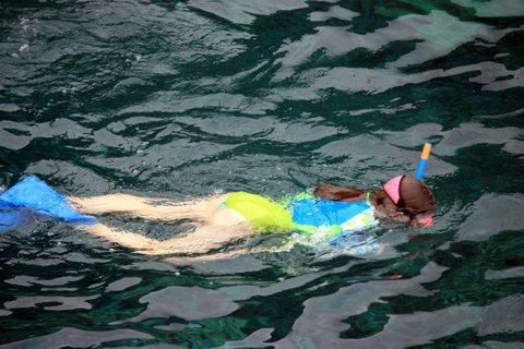 snorkel (8)